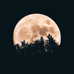 Sokreirajte s pomočjo lune